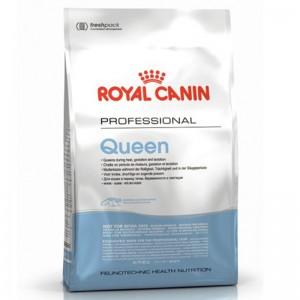 Корм Royal Canin Queen для беременных и лактирующих кошек, 4кг