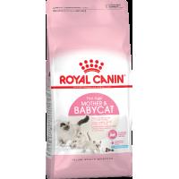 Royal Canin для котят и беременных и кормящих кошек