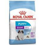 Обзор сухого корма Royal Canin Giant Puppy Royal Canin Giant Puppy для щенков гигантских пород (вес взрослой собаки более 45 кг) в возрасте с 2 до 8 месяцев>