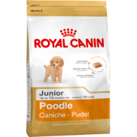 Royal Canin Poodle Junior, 0,5 кг
