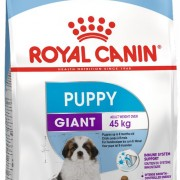Обзор корма Royal Canin Giant Puppy