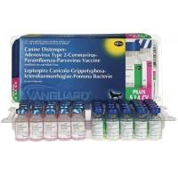 Vanguard Plus 5 L4 CV, 1 доза