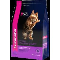 Eukanuba для котят
