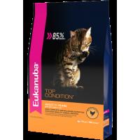 Eukanuba для  взрослых кошек