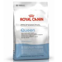 Royal Canin для беременных и лактирующих кошек
