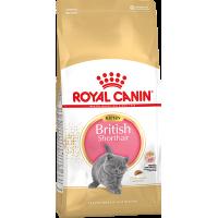 Royal Canin British Shorthair Kitten для британских котят