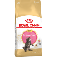 Royal Canin Maine Coon Kitten для котят породы мейн-кун