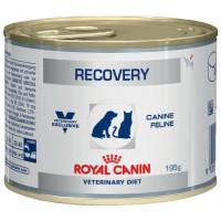 Royal Canine Recovery для собак и кошек в восстановительный период, 0,195кг