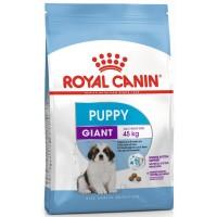 Royal Canin для щенков гигантских пород 2-8 мес