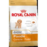 Royal Canin для щенка пуделя, 0,5 кг