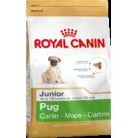 Royal Canin для щенков мопса до 10 мес, 1.5кг